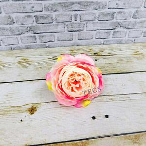 Big Cabbage Rose Pink