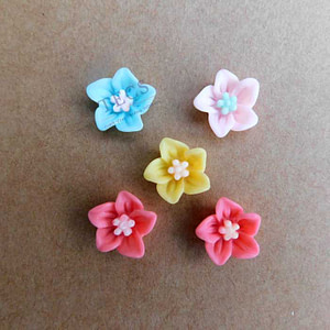 Resin Flowers & Charms