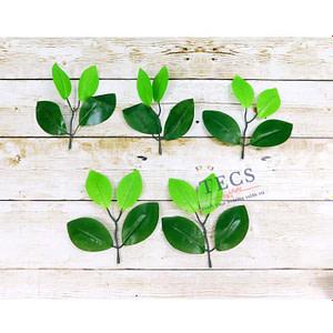 Bay Leaf Green