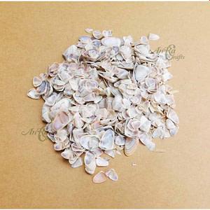 Buy Sea Shells online india