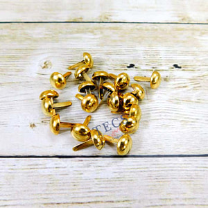 Golden Brads-10 mm