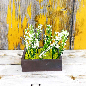 Snow Grass White-2