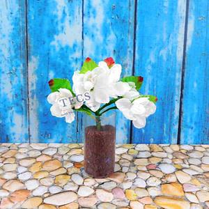 Ranunculus Flower White
