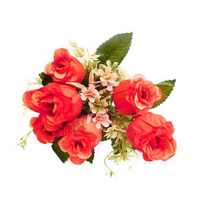 Closed Rose Red